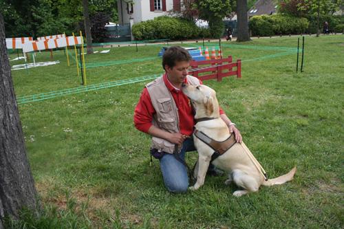 Focus métier : Dresseurs de chiens d'aveugle